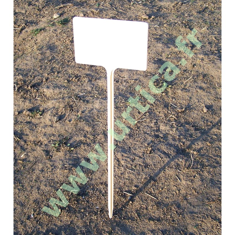 5 étiquettes semis rigides 34 cm  (marquage feutre)